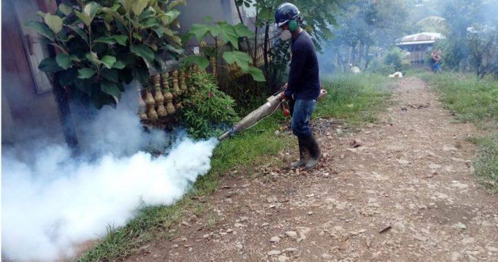 Minsa, alcaldía y comunidad logran detener al dengue en Siuna